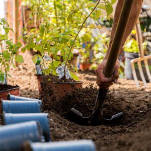 Bepflanzungen Vassiliou Gartenbau & Unterhalt